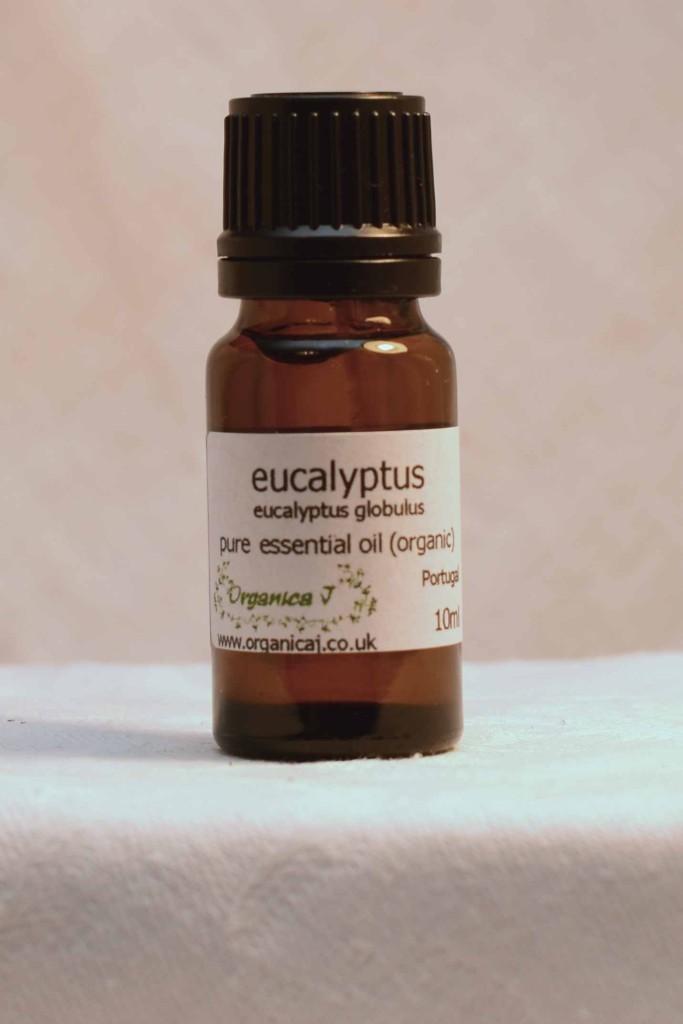 Eucalyptus Organic Essential Oil